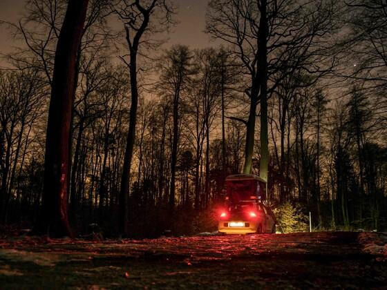 Der Kleine unterm Sternenhimmel im Wald